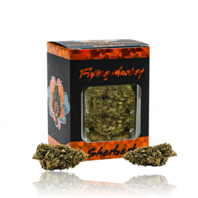 Flying Monkey | Infused Delta 8 Flower Jar
