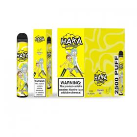 Haka | Disposable Pen (10 Pack)